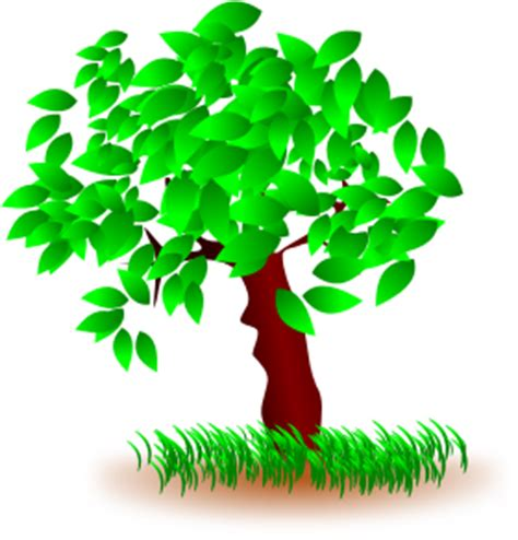 218 Words Essay for Kids on trees - PreserveArticlescom